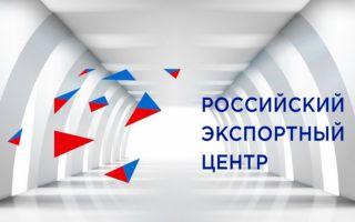 Российский экспортный центр представил заключение о Концепции нашей МП набора 2019 года