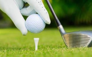 Приглашаем принять участие в гольф-турнире на Кубок Ассоциации выпускников ЮФУ
