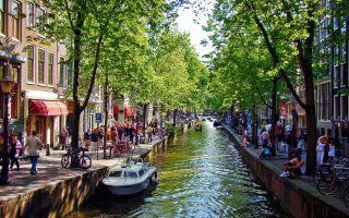 20-21 мая в Амстердаме (Нидерланды) состоялась международная конференция, посвященная новым формам сотрудничества в рамках ТТИП